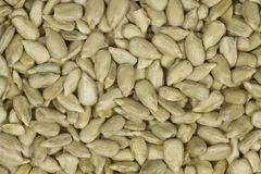Raw Sunflower Seed Kernels. Top view of sunflower seed kernels. Can be used as background stock photos