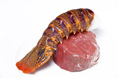 Raw surf and turf royalty free stock images