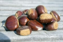 Raw sweet chestnuts scattered on a wooden table, tasty and healthy brownish nuts. Sunlight Stock Photo
