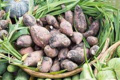 Raw sweet potato Royalty Free Stock Images