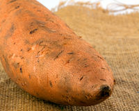 Raw sweet potato on burlap Royalty Free Stock Photography