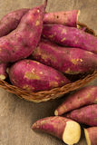 Raw sweet potatoes on wooden background closeup. Fresh vegetable Royalty Free Stock Photography