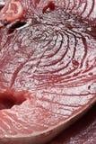 Raw swordfish Stock Photography