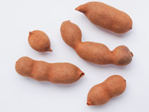 Raw tamarind fruits Royalty Free Stock Image