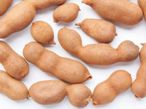 Raw tamarind fruits Stock Photography