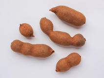 Raw tamarind fruits Stock Images