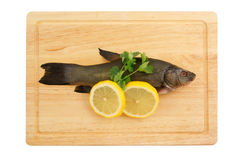 Raw tench on cutting board isolated. Raw tench with lemon and parsley on cutting board isolated Stock Images