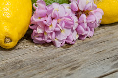 Raw textured wood Background backdrop with lemon and flower Royalty Free Stock Photo