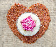 Raw Thai jasmine rice and raw brown rice heart shape Royalty Free Stock Image