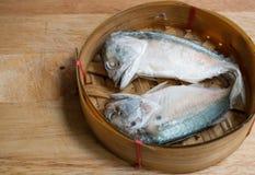 Raw Thai Mackerel. Selection focus royalty free stock photo