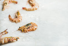 Raw tiger prawns on chipped ice, copy space Stock Photo