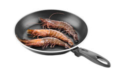 Raw tiger shrimps on frying pan. Stock Image
