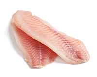 Raw tilapia Royalty Free Stock Images