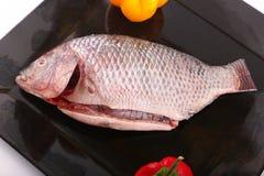 Raw Tilapia fish. On black plate Stock Photo