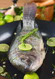 Raw Tilapia Fish in Frying Pan Royalty Free Stock Photo