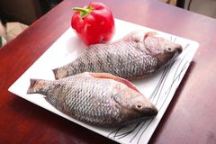 Raw Tilapia fish. On white plate Royalty Free Stock Image