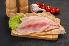 Raw tilapia fish. Ready for cooking stock images