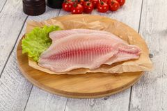 Raw tilapia fish. Ready for cooking royalty free stock photo