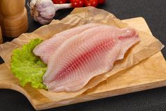 Raw tilapia fish. Ready for cooking stock image