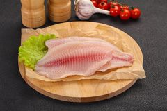Raw tilapia fish. Ready for cooking stock photo