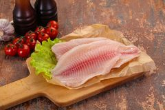 Raw tilapia fish. Ready for cooking stock photography