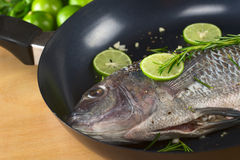 Raw Tilapia in Frying Pan Royalty Free Stock Images