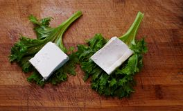 Raw Tofu Royalty Free Stock Photography