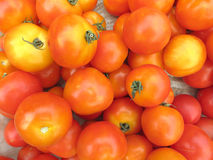Raw tomatoes. Close up a lot of raw tomatoes background Stock Image