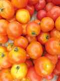 Raw tomatoes. Close up a lot of raw tomatoes background Stock Photo