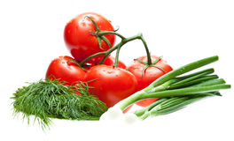Raw tomatoes, dill and green onion Stock Photography