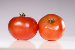 Raw tomatoes Stock Images