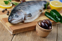 Raw trout on the board Stock Images