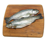 Raw trout on a cutting board on a white background. Raw fish trout on a cutting board isolated on a white background - top view Stock Photo