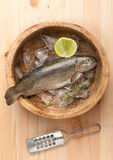 Raw trout fish with ice Royalty Free Stock Images