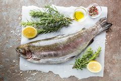 Raw trout fish. On paper with rosemary and lemon on a stone table, top view stock photography