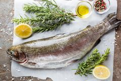 Raw trout fish. On paper with rosemary and lemon on a stone table, top view royalty free stock photography