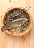 Raw trout fish Royalty Free Stock Photos