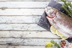 Raw trout fish. On slate with rosemary and lemon over white wooden table, top view royalty free stock photos