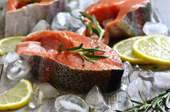 Raw trout. Stock Images