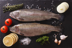 Raw trout with ingredients on a slate board closeup. horizontal Stock Photo