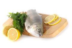 Raw trout with lemon and dill Royalty Free Stock Image