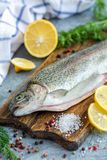 Preparation of rainbow trout. Raw trout, lemon slices, salt pepper and dill on wooden chopping board, selective focus stock photography