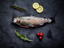 Raw trout, rosemary, tomatoes, lemon Stock Image