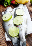 Raw Trout Seasoned with Lime Slices and Peppercorns Royalty Free Stock Photo