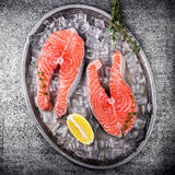 Raw trout stakes with lemon and rosemary on metal tray. Royalty Free Stock Images