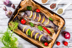 Raw trouts fish on a baking dish, top view Stock Images