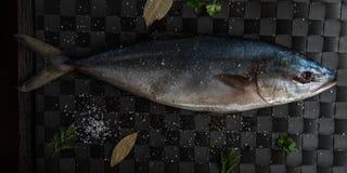 Raw tuna fish Royalty Free Stock Photos