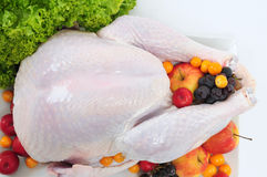 Raw turkey. Stock Photo