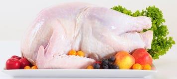 Raw turkey. Royalty Free Stock Images