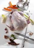 Raw turkey being prepared to cook Royalty Free Stock Photography